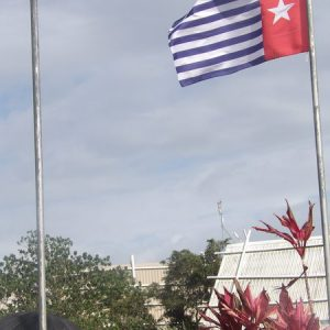 Papuans gather in Vanuatu for Liberation Movement summit