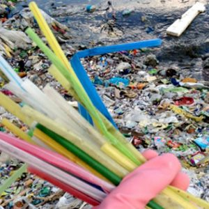 Vanuatu walks the talk – and becomes first country to ban plastic straws
