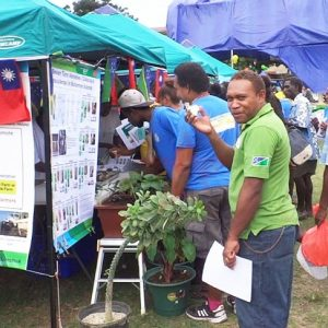 Taro tasting attracts many in Solomon Islands