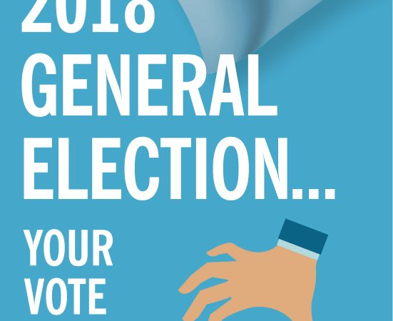 2018 General Election: MOG to compile final report