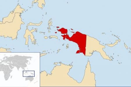 Dozens killed in Papua attack