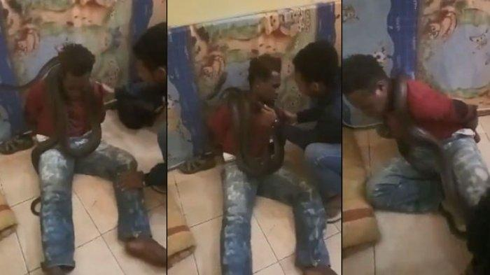 UN urges torture inquiry after Indonesia police put snake on West Papua boy
