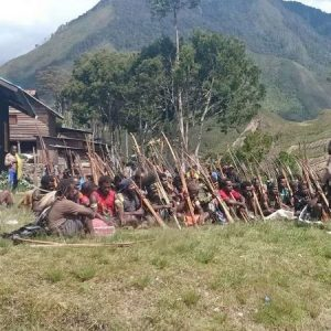 UK petition calls for West Papua chemical weapons investigation